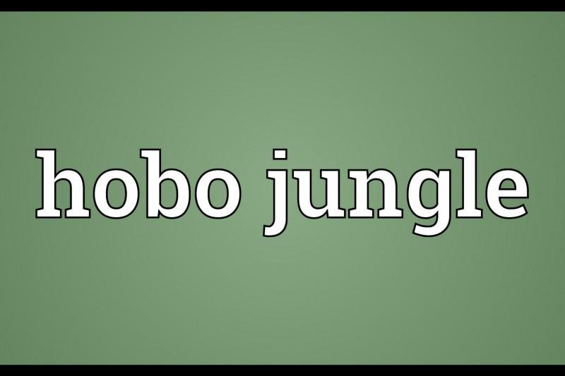 Montbrun Bocage : Hobo jungle en concert