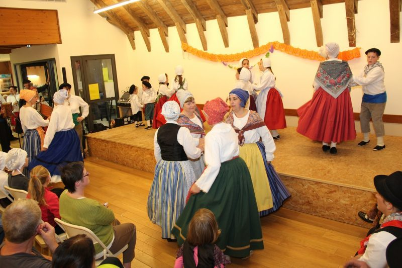 Spectacle en costumes traditionnels