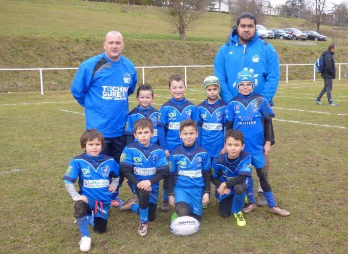 Saint-Gaudens : Rugby à 13, les Ours