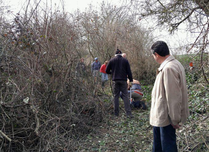 Caminarem : Des bénévoles  au service de la nature.