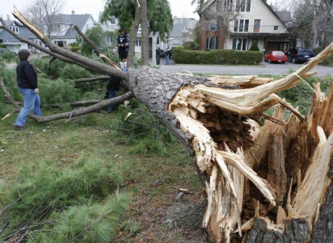 Vigilance météorologique orange pour vents violents sur le département de la Haute-Garonne
