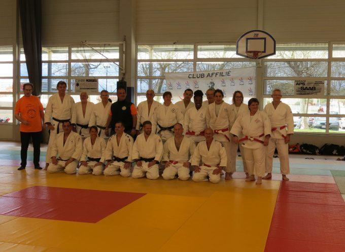 Un demi-siècle de judo à Carbonne.
