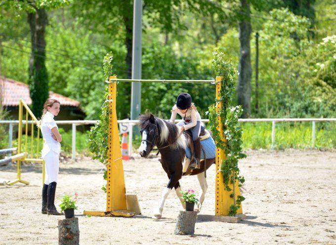 L'été 2017 au Centre Equestre du Volvestre : Des activités pour tous.