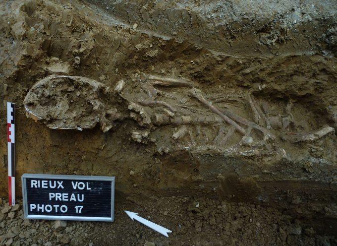 Rieux Volvestre : Réseau d'assainissement et découverte archéologique.
