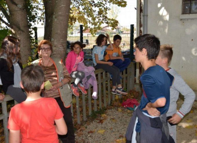 CAP Jeunes : un chantier-loisirs autour du livre