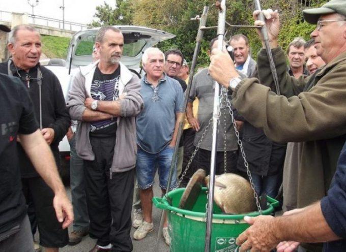 Cazères : Concours de pêche au feeder