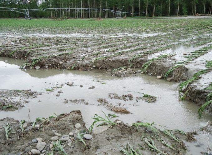 Le Conseil départemental débloque 500 000 euros pour soutenir les agriculteurs victimes des intempéries