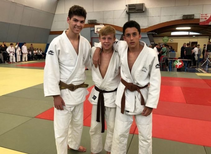 Judo Club Martrais : Reprise au tournoi régional de Pau