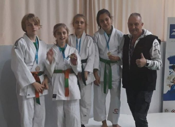 Judo Club Martrais: le petit club du Comminges s'est encore distingué!