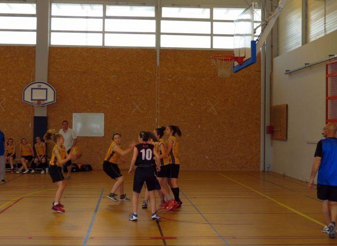 Reprise des championnats pour le Noé Carbonne Basket