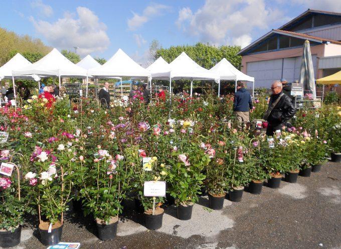 Floralies à Villeneuve de Rivière