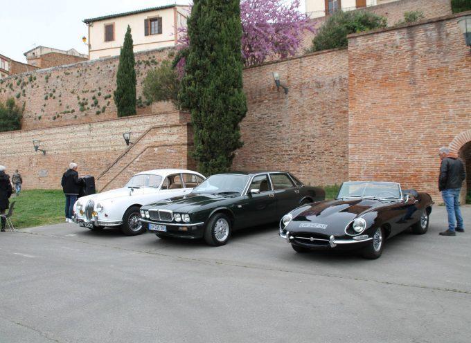 Les belles automobiles se donnent rendez-vous à Muret