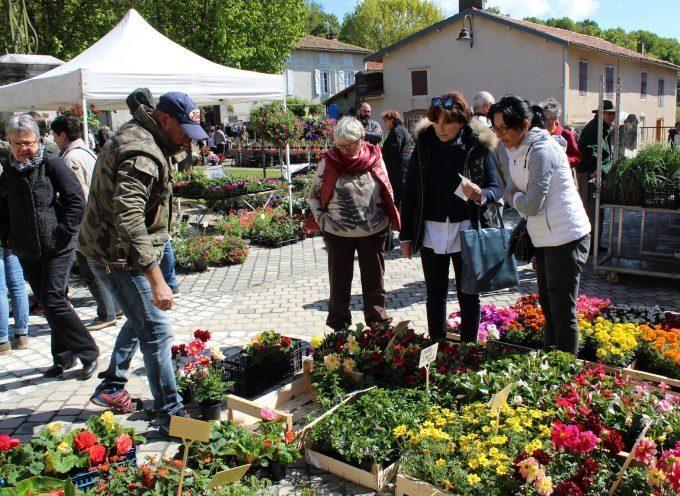 25ème floralies de Villeneuve, la notoriété n'est plus à faire