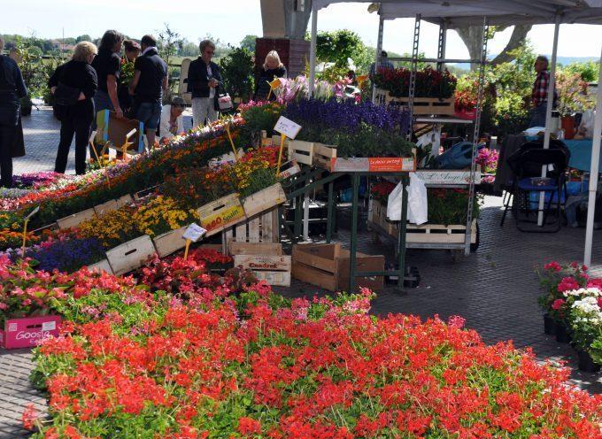 Montréjeau : Floralies, vide grenier et puces des couturières