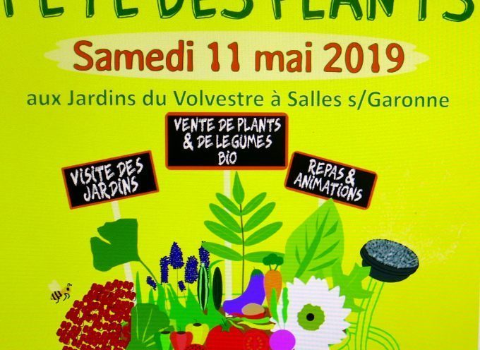 Les jardins du Volvestre proposent  la fête des plants