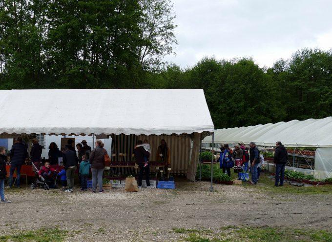 Fête des plants à Salles/Garonne : Un franc succès