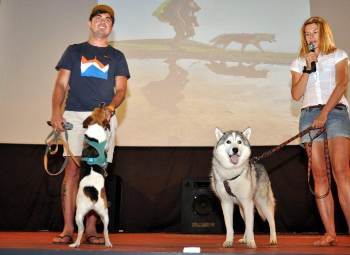 Montréjeau : Un couple, deux chiens, une traversée !