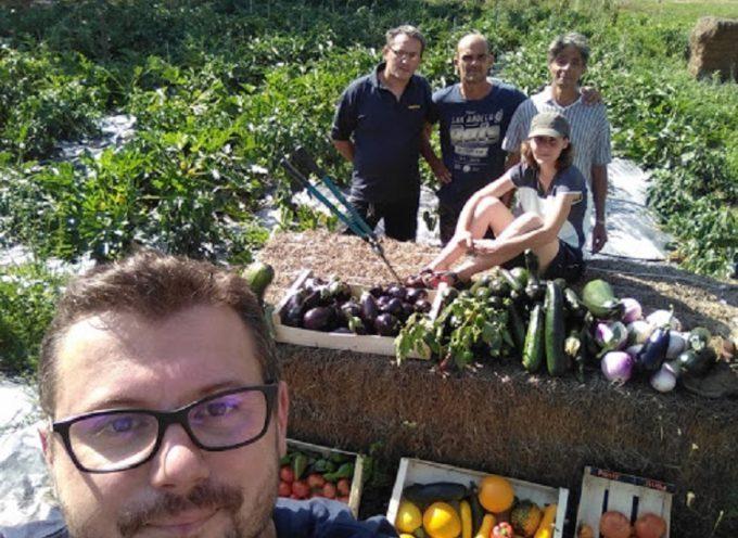 Déjà 1 an pour l'épicerie solidaire qui cultive ses propres légumes