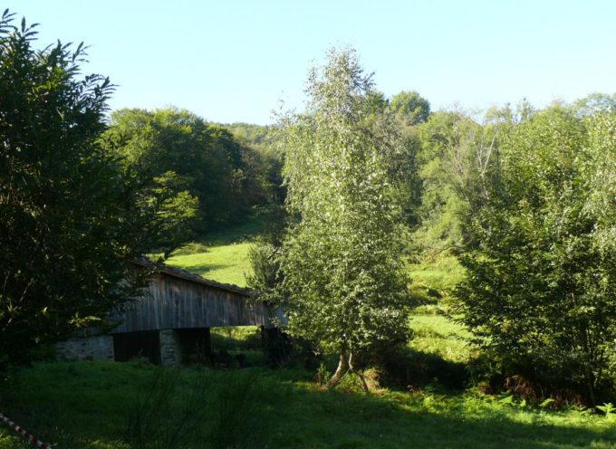 Cette année, l'Association des Parents d'Elèves du Cagire (RPI Couret-Ganties -Estadens) s'est lancé le défi d'organiser un Trail !