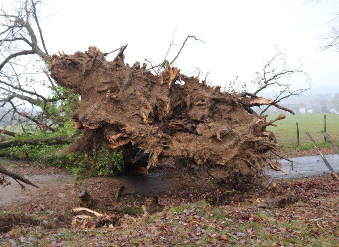 Landorthe : Après le passage de la tempête…