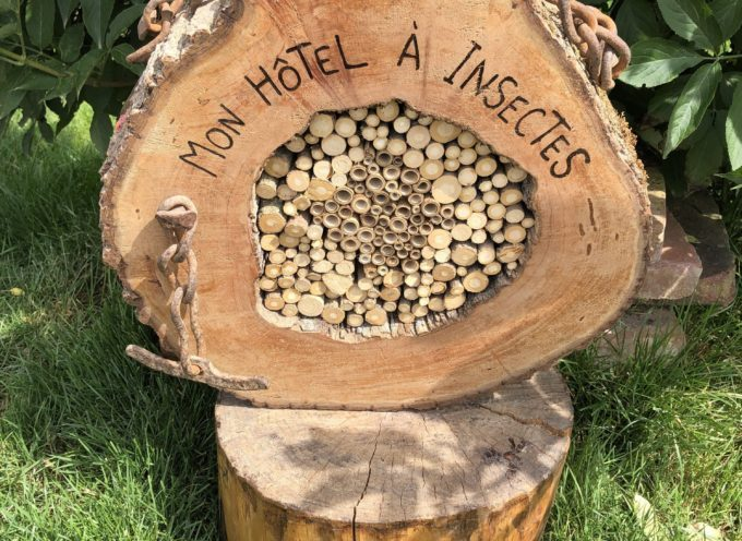 """Le Fousseret : """"je fabrique mon hôtel à insectes"""""""