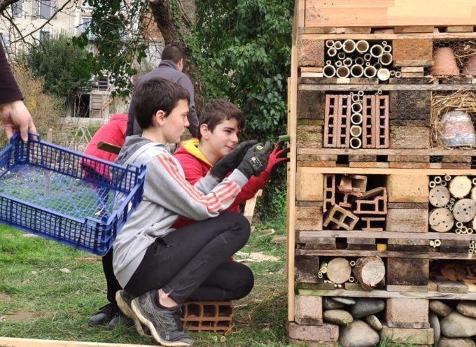 Carbonne : Un hôtel à insectes fabriqué par le conseil municipal des jeunes