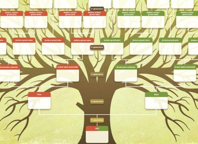 OCCUPEZ-VOUS : Pensez Généalogie
