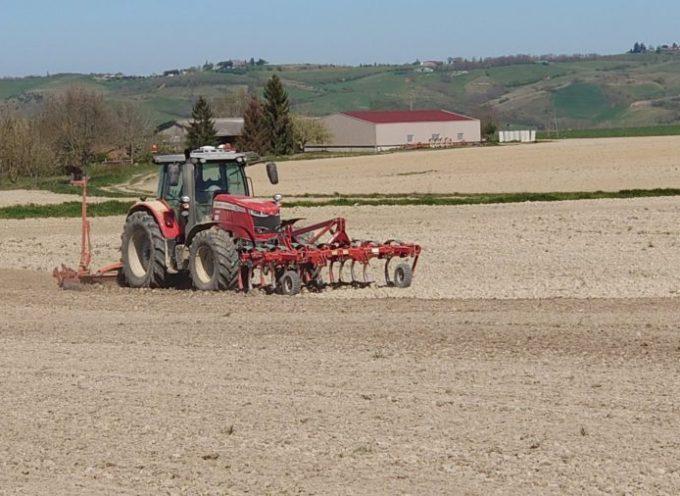 """""""Petite république et vous"""" : Témoignage d'une agricultrice"""