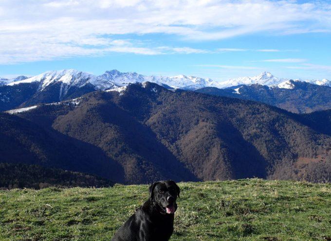 Rando Vision  Le Tourroc (ou Mont Sacon 1541m),  depuis la carrière