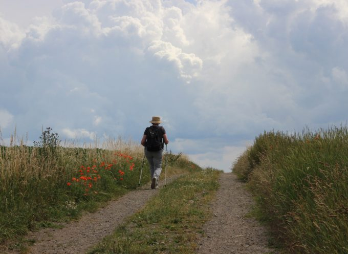 Agassac-Sénarens : Rando ferme nature et patrimoine