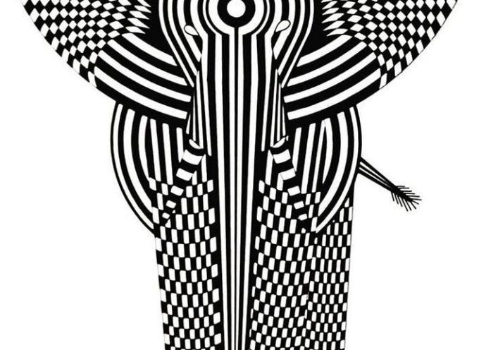 KZO, artiste en noir et blanc, expose à Muret