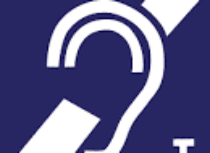 Saint-Gaudens : Portes ouvertes pour l'association EPEES