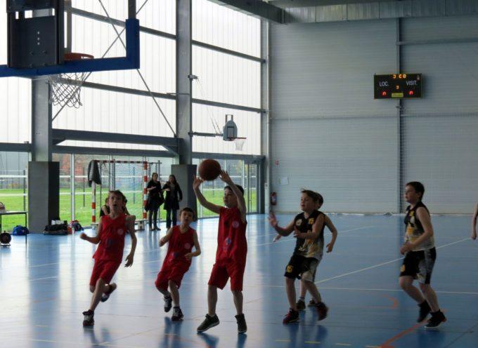 Noé Carbonne Basket : planning des 10 et 11 octobre
