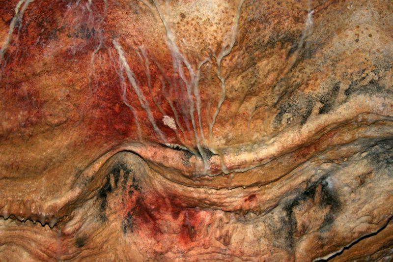Visite nocturne des grottes de Gargas (crédit photo grottes de Gargas)