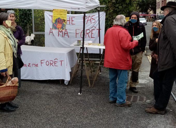 Marches pour défendre la forêt pyrénéenne à Aspet