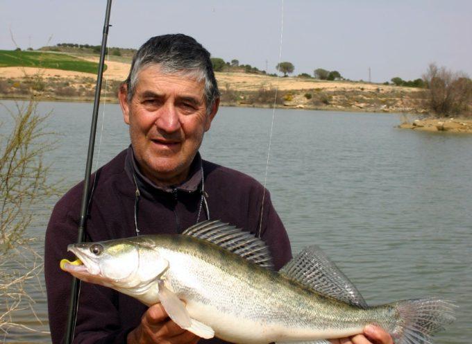 La pêche du sandre