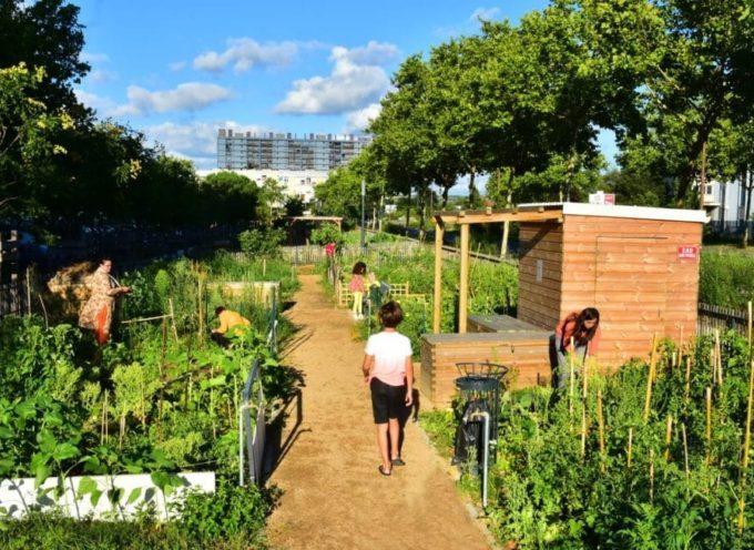 Des coups de pouce financiers pour soutenir les projets de jardins partagés et d'agriculture urbaine en Haute-Garonne: candidatez!