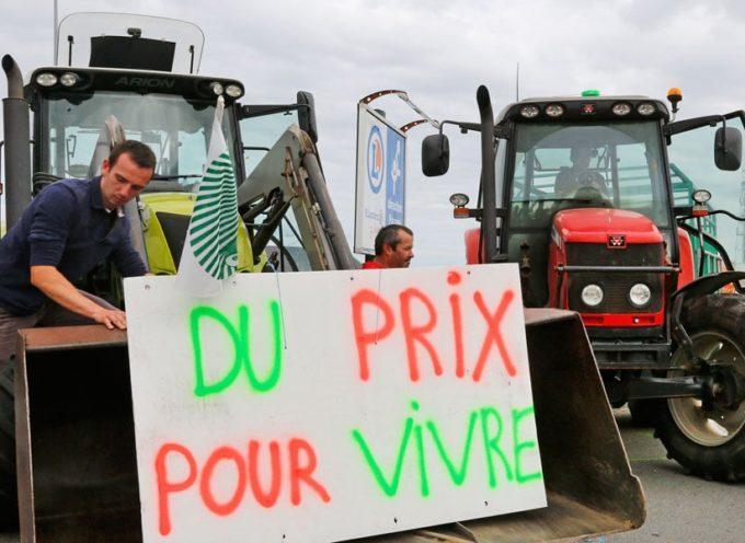 Les agriculteurs vent debout contre la grande distribution vont manifester demain