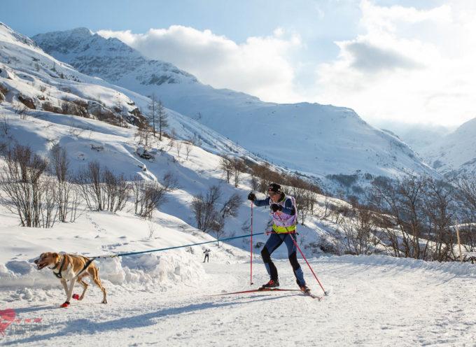 Emmanuel Henry, nous régale de ses résultats, en skijoëring, avec Ades et Ghost