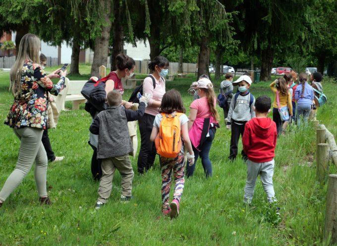 Montréjeau : Nettoyage de la base de loisirs par le Courraou