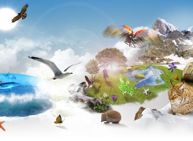 Samedi 22 mai, journée Mondiale de la biodiversité