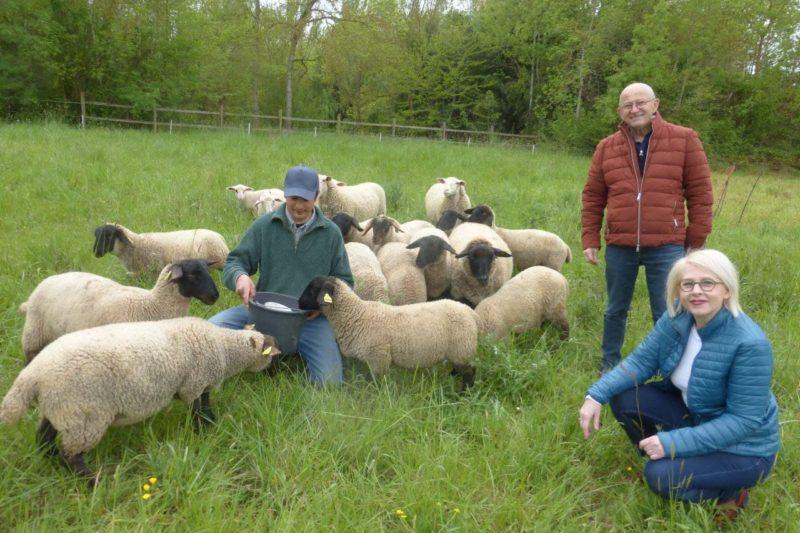 V. Vallier et E. Gasquet en compagnie de M. Colmant et ses moutons