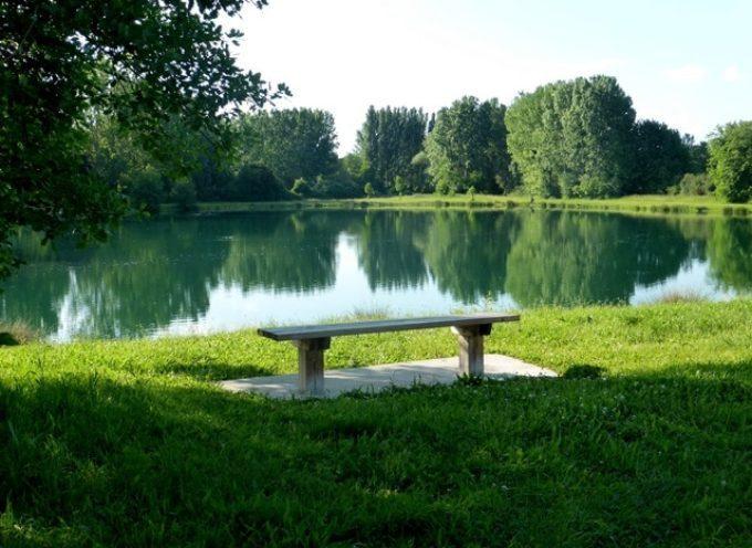 Nature ô lacs : Première journée de l'environnement à Longages